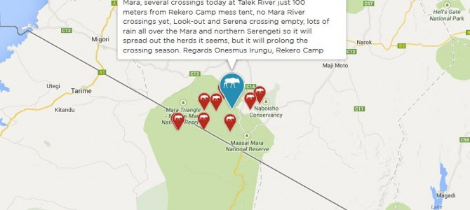 HerdTracker – Live map of Africa's great wildebeest migration 2014/2015